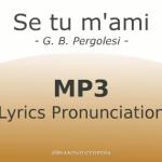 se_tu_m_ami_pronunciation_560