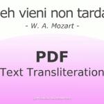 Deh vieni non tardar Text Transliteration